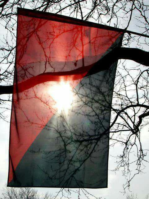 cnt_bandera_sol
