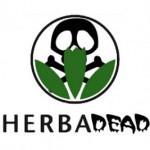 [CNT – Huesca] HERBALIFE estafa a l@s parad@s